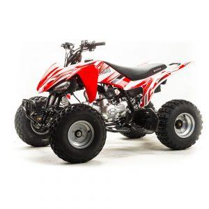 Купить Квадроцикл ATV 125S (2020 г.)