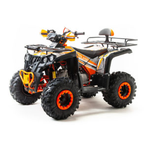 Купить Квадроцикл 125 RAPTOR