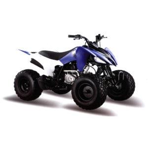 Купить Квадроцикл 150S