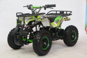 Купить Квадроцикл ATV E006 800Вт (2020 г.)