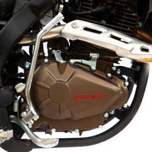 Купить Мотоцикл Regulmoto ZR 250 PR